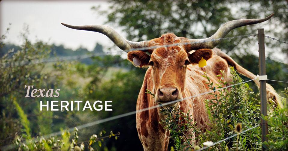 texas-heritage